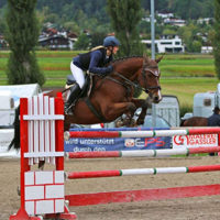 Reference horse: Gelding from Levantos with rider