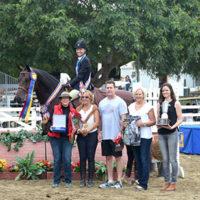 Referenzpferd: Wallach von Contendro mit Reiterin und Gruppe